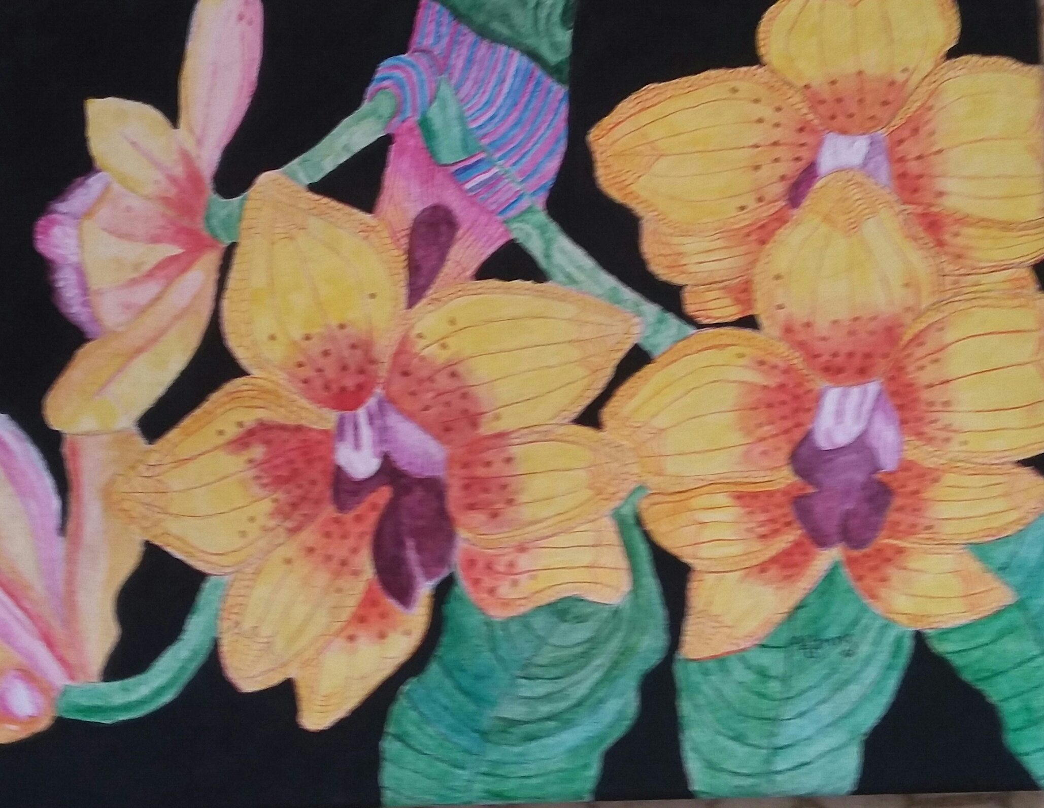 genine-hanns-butterfly-orchid