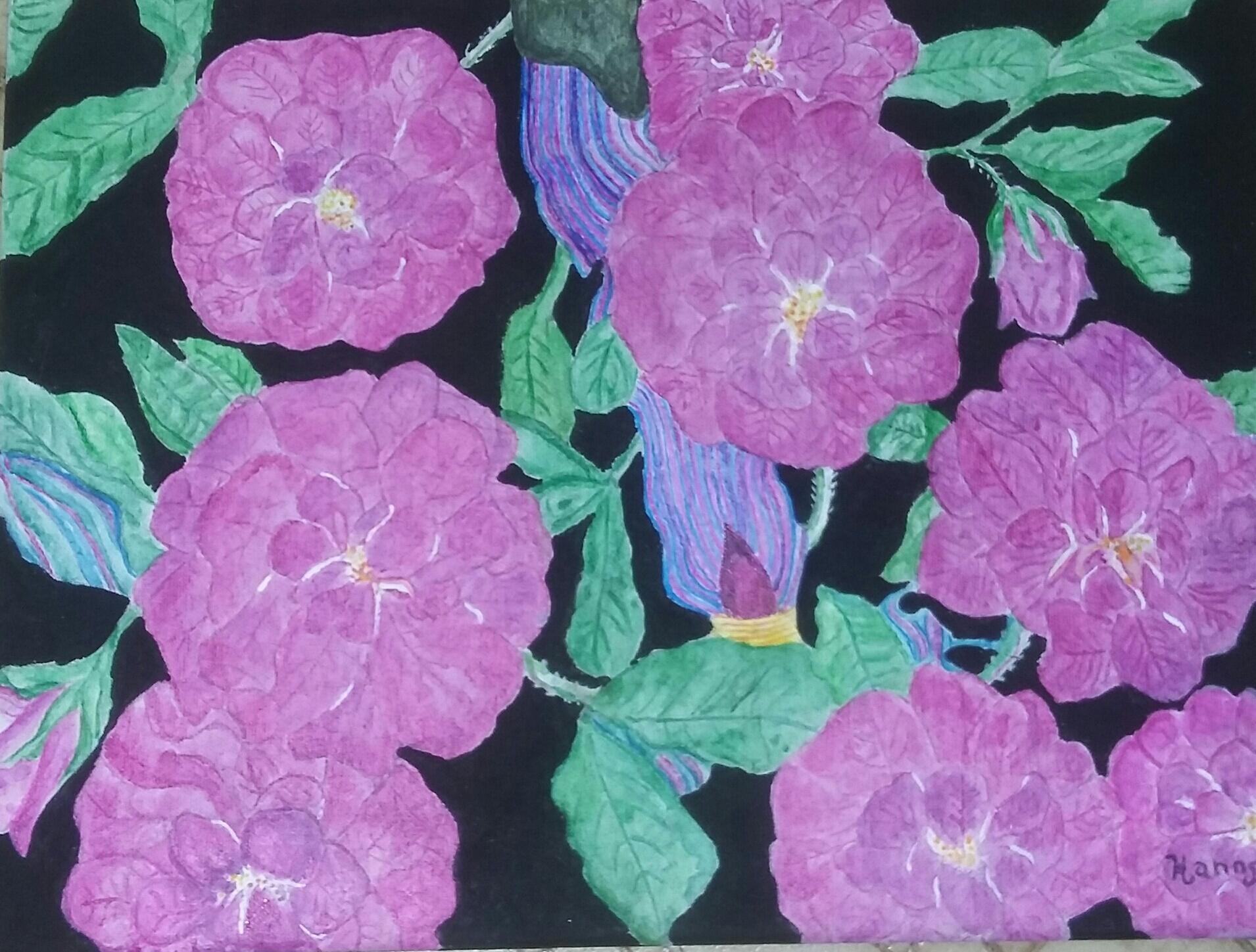 genine-hanns-purple-sidewalk-rose